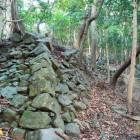 西登り石垣①