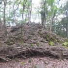 崩れた石垣跡