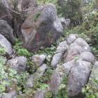 岩登りルート