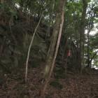 正面岩の上が主郭