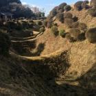 美しい畝堀