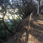 尾根沿いの崖