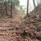 屈曲した竪堀