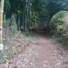 長徳寺近くの登城口