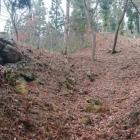二曲輪の登城口からすぐの空堀
