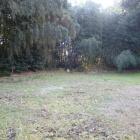 東林寺裏山にあった曲輪と思われるスペース