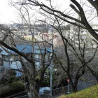 城山公園から北西(恩田川上流方面)側