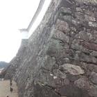 天守曲輪の石垣。