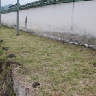 武者走りと土塀