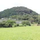 岡部氏屋敷跡より朝日山城を遠望
