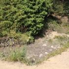 馬洗池、上部が横矢桜馬場