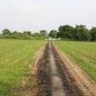 同左より南側を見る、畑に成ってる
