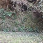 高野丸手前の曲輪の石垣