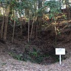 葵の井戸と土塁