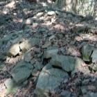 詰め城の下の石積