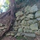 金子曲輪の石垣