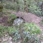 小野路城の水源・小町井戸