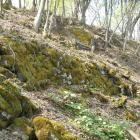 西郭群の石垣