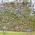 天守台(南側)石垣