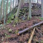 曲輪5(小姓丸)石垣(北西側)