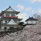 桜に浮かぶ天守と隅櫓