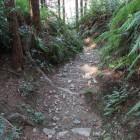 北ルート、急峻な登城路