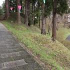 本丸東側の堀と土塁、城塁