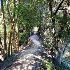 土橋状の通路