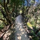 2箇所に土橋状の通路があります。