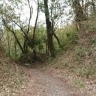 城山と奥ノ山の間の堀切