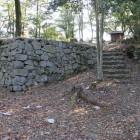 同左本丸石垣
