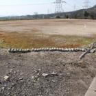 発掘調査後埋め戻され現グラウンドゴルフ場