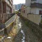 外堀・琵琶湖疎水から南へ伸びる水路