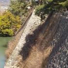 伊賀上野城 石垣
