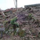 右衛門丸跡の石垣