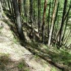 急斜面の竪堀