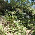南斜面の石垣