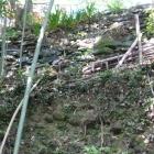 崖を利用した切岸上の本丸東側土塁石垣