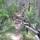 整備された登城路