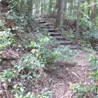 本曲輪北奥の切岸横階段と手前堀切