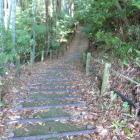 同左より西曲輪、水の手曲輪への登城路