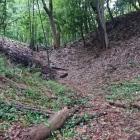 主郭と馬出の間の堀
