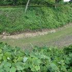 石沢館側から見た二の丸と石沢館間の堀