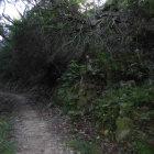 展望台に向かう途中の石垣