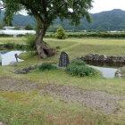 お庭の泉水跡