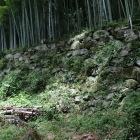 居館跡に残る石垣