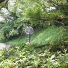 浜松城の無料駐車場のところにある土塁