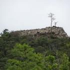 麓から見た出丸石垣