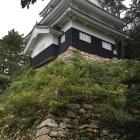 本丸鉄櫓の北西下の石垣