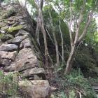 本丸北東側の石垣